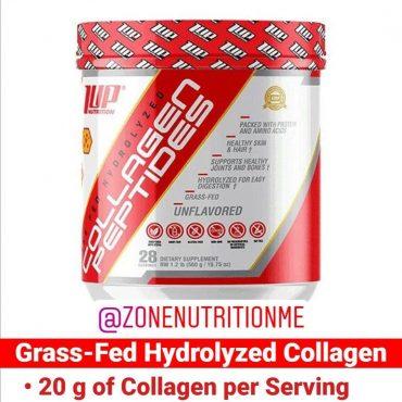 1up-collagen