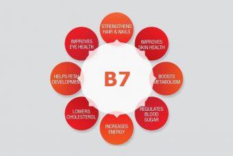 Why Your Body Needs Biotin?
